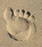 813425_small_foot_print