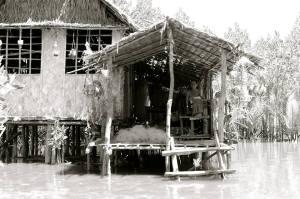 Camara's Haven